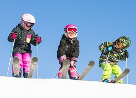 Family Fun Skiing and Activity Week