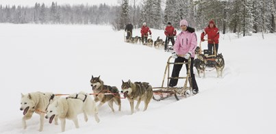 OUR FAVOURITE ACTIVITIES TO TRY ON YOUR SKIING TRIP TO SCANDINAVIA